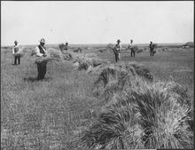 the great plains during world war ii hurt r douglas