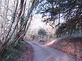 Whitegates Lane - geograph.org.uk - 333200.jpg