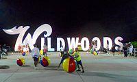 Wildwoods sign night.jpg