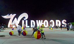 Wildwoods sign night.jpg