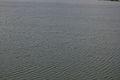 Wind-generated Water Waves - Nalban - Kolkata 2013-09-20 0223.JPG