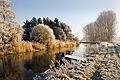 Winter in the Netherlands.jpg