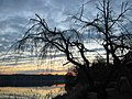 Winter sunrise over Thoreau - 2-21-06 2 (103157291).jpg
