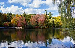 A small lake in front of autumn-foliage trees