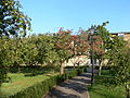 Worcester College - Orchard.jpg