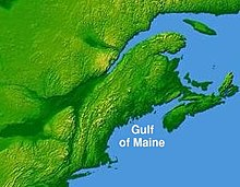 A topographical map depicting the Gulf of Maine region, with the land being colored green. Visible are the Northeastern United States, Nova Scotia, New Brunswick, and southeastern Quebec