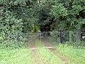 Wrought iron gate. - geograph.org.uk - 530815.jpg