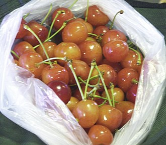 Yamagata Prefecture - Yamagata cherries, such as these, often sell for USD $30 per pound or more.