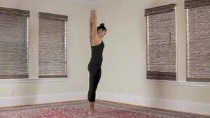 File:Yoga Hast Vinyasas - YOGAnDHARMA - Parsvabhaga.theora.ogv