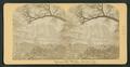 Yosemite Falls, Cal, by Littleton View Co. 2.png