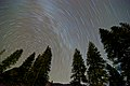 Yosemites night sky - with Milky Way (8069499581).jpg