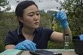 Young Wong Ham checking chlorine level of local water source in La Paz, Honduras (5421482).jpg