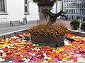 Zürich - Augustinergasse - Münzplatz IMG 6226.JPG