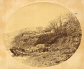Zihu Village on the Bank of the Han Jiang (Han River), Showing Houses Built High on the Riverbank and Houseboats below with Their Characteristic Curved Awnings. Hubei Province, China, 1875 WDL2100.png