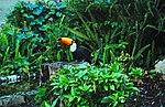 Zoo de Lisboa by Juntas 13.jpg