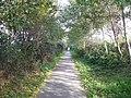 Zottegem Oude Trambaan Houtkanten op talud (4) - 277452 - onroerenderfgoed.jpg