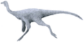 """""""Ornithomimus"""" sp. by Tom Parker.png"""