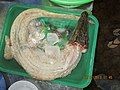'Crocodile Meat' a delicacy in Mui Ne fish food restaurants.jpg