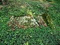 Židovský hřbitov u Mořiny 05.JPG