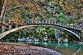 Πηγές Βοϊδομάτη - Γέφυρα Αρίστης.jpg