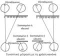 Συνοπτική μέτρηση κορικής με τη χρήση κανόνα.png