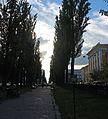 Бульвар Тараса Шевченка 13.JPG