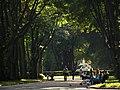Верхня тераса Стрийського парку.jpg