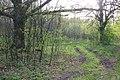 Весняні дороги - panoramio.jpg