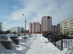 Город Коммунар, Ижорская улица (06.03.2010).JPG