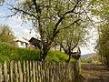 Зима и лето во село Тајмиште 02.jpg