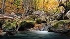 Осінь у Великому каньйоні.jpg