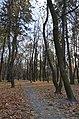 Парк-пам'ятка садово-паркового мистецтва садиби І.М. Терещенка (16,0 га), село Шпитьки-1.JPG