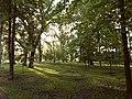 Парк у Міському Саду.jpg