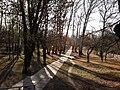 Парк - panoramio (174).jpg