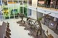 Природњачки центар Свилајнац 32.jpg