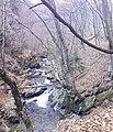 "Резерват ""Стара река"" 09.jpg"