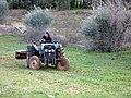 Сельхозработы в Бенгашире. Ливия..jpg