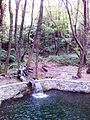 Смоларски водопад 20.jpg