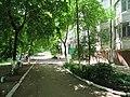 Солнечный. 4 июня 2013г. - panoramio (30).jpg