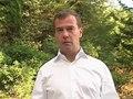 File:Строительство дороги через Химкинский лес будет приостановлено.ogv