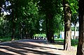 Территория городского сада в Киеве. Весна 2019. Фото 29.jpg