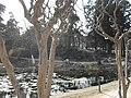 南京莫愁湖公园 - panoramio (11).jpg