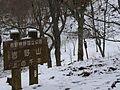 吉野山上千本にて 2013.2.17 - panoramio.jpg