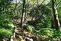 多摩川台公園 - panoramio (17).jpg