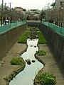 富士見ヶ丘駅前から神田川 - panoramio.jpg