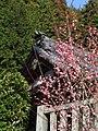 最光院 つくばの里 梅まつり (愛知県豊田市日下部町) - panoramio - gundam2345 (1).jpg