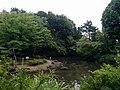 東中野公園 pond.jpg
