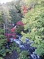 秋の滝見橋 - panoramio.jpg