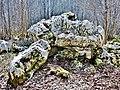. Le dolmen. (4).jpg