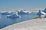 00 2121 Antarktische Halbinsel - Cuverville Island.jpg